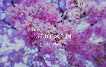 Sonyミラーレス一眼α5100の作例紹介